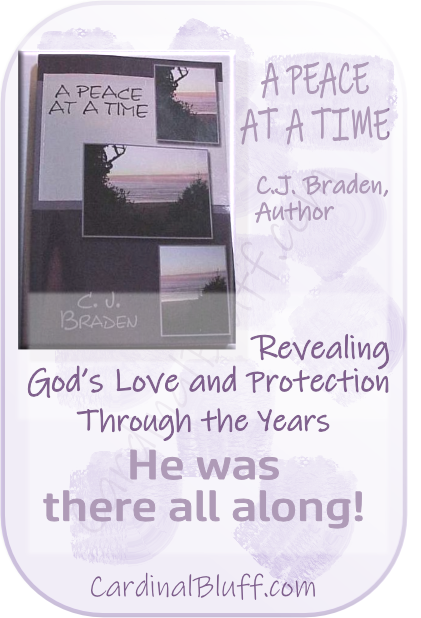 A Peace At A Time, C.J. Braden, author