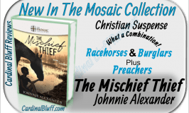 The Mischief Thief - Christian Suspense - Johnnie Alexander, author
