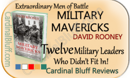 Military Mavericks - nonfiction. David Rooney author